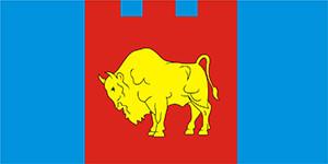 Флаг Брестской области